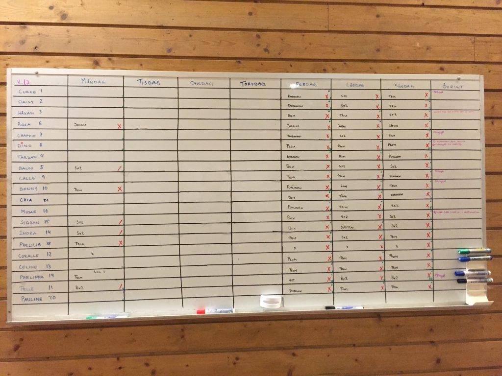 Våran whiteboard där alla hästar står med och har ett eget schema för veckan. Alla kryss, prickar och bokstäver betyder olika och skrivs efter vad varje häst gör den dagen. Väldigt smidigt och enkelt!!