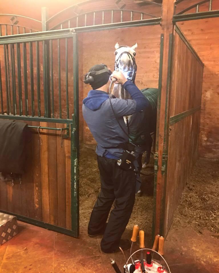 Tandläkaren hann även komma en tur innan jul vilket förvånansvärt accepterades av de flesta hästarna